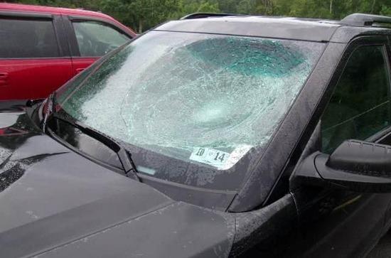 windshield replacement allen tx
